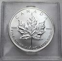 Fabulous 2007, 1 oz uncja srebra Liść Klonowy